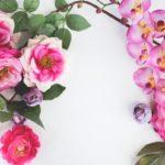 ブルーミングスクール5月開講!自分の花を咲かせよう