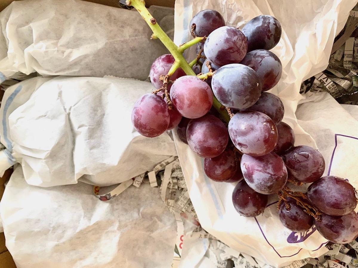 ライフスタイルこだわり3題。種あり葡萄・農薬落とし・超低温冷凍