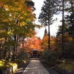 秋の高野山で、昔の人の驚異的な伝聞力に思いをはせた