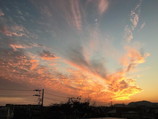 鎌倉に住むと意を立てて1年。鎌倉に来ました