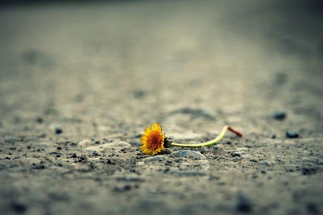 自責と自罰は自滅への道