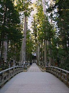 高野山へ行ってきました