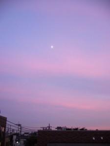 ピンク色の空に浮かんだ月